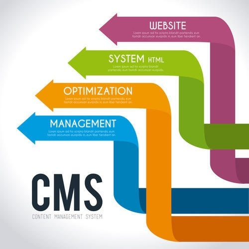 cms solutions for business