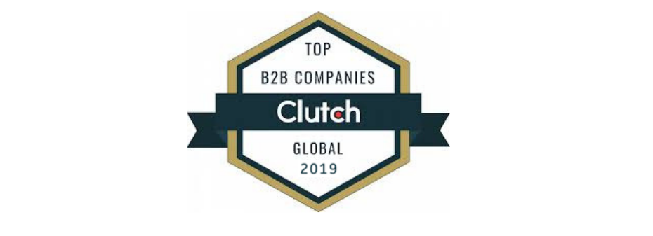 B2B IT development leader 2019